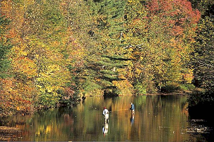 Pesca alla trota nella Pennsylvania occidentale