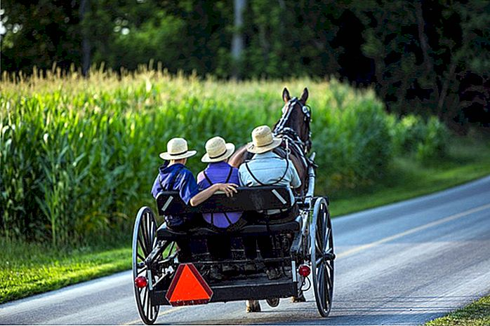 Ohio's Amish Country: 12 Highlights and H>